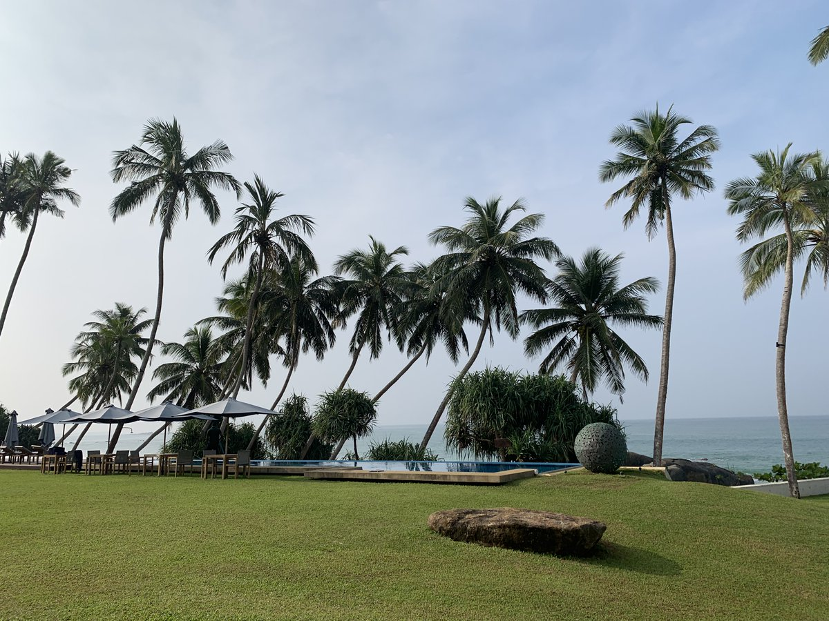 What a way to relax after a long year, my good friends hotel in Sri Lanka @teardrophotels