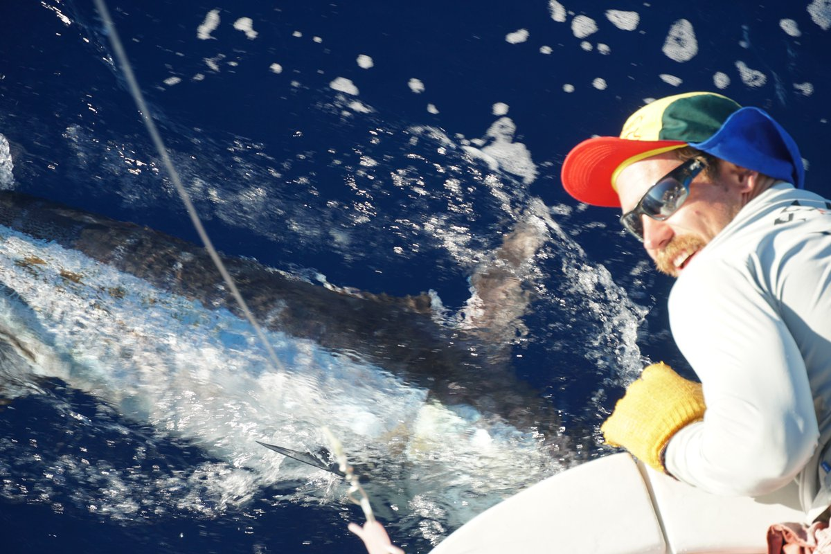 Kona, HI - Notorious Two went 1-2 on Blue Marlin and 1-1 on Striped Marlin.