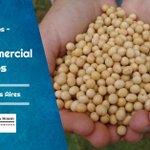 Image for the Tweet beginning: Oportunidad laboral: ASESOR COMERCIAL GRANOS  #granos