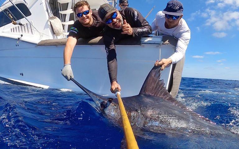 Rio de Janeiro, Brazil - Zoom went 3-5 on Blue Marlin.