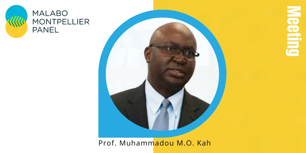 test Twitter Media - Week 10 of our #MaMoFaces Campaign!   We introduce you to Prof. Muhammadou M. O. Kah, Vice President of Academic Affairs / Provost and Professor of ICT & Computing @ The American University of Nigeria.  Read his bio on our #MaMoPanel website. https://t.co/vd4v9Y7vjP https://t.co/GLqwN1e3Fo