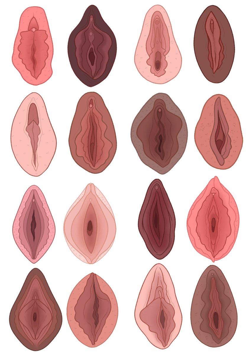 Your Vagina Is Terrific