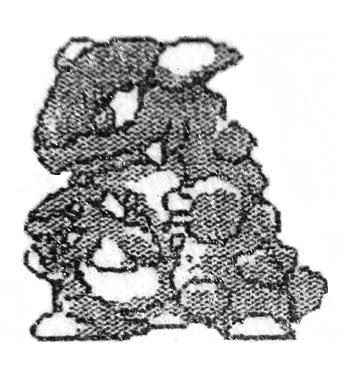 3 Decades of Kangaskhan:  With an internal ID number of #2, Kangaskhan is one of the oldest Pokemon in existence. But unlike many of the Pokemon his age, Kangaskhan has remained virtually unchanged.  1. Gen 1 beta sprite, 1990 2. Original artwork 3. Modern artwork <br>http://pic.twitter.com/M23zjItcIE