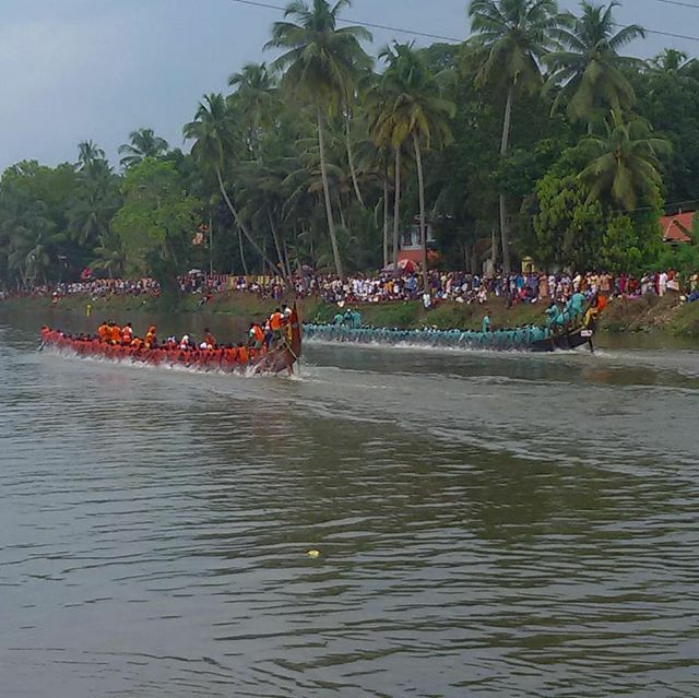 Boat Race #boat #boatrace #festival #sports #watersports #incredibleindia #race #athulyabharath #naturelove #lovenature #naturebeauty #naturephotography #calm #serene #scenic #kerala #india #indian #godsowncountry #planetearth #igers #natureporn #naturewalk #landscape