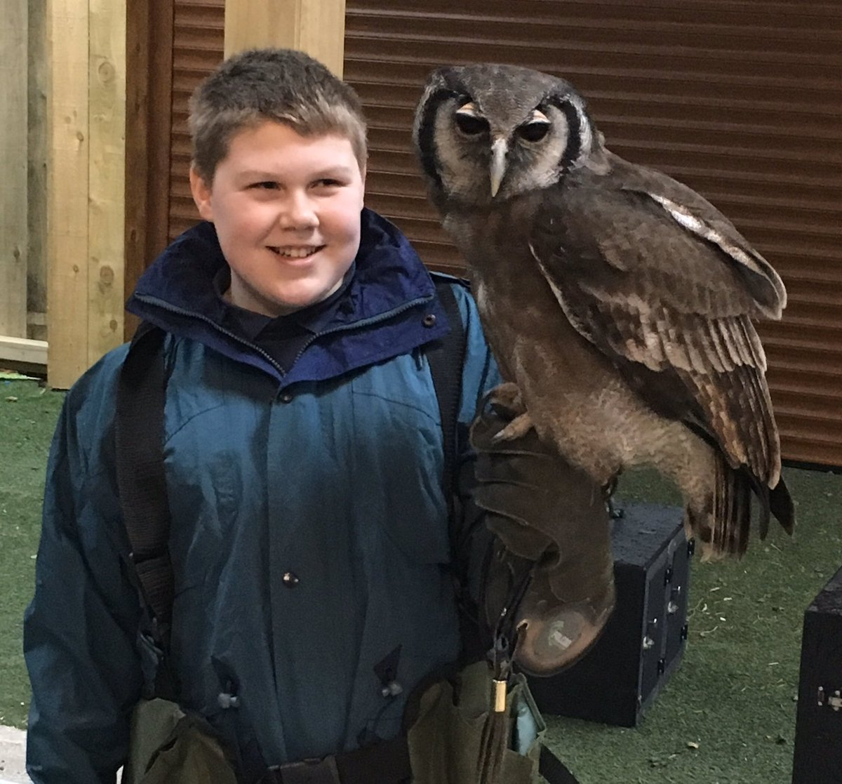 Good morning twitterati, today we are off to @CheshFalconry to fly owls in  #Cheshire countryside, our young people #autistic #autism learn #social skills, #emotional control, Staying #calm, #teamwork, develop #motor skills, build #confidence & #selfesteem, respect for #nature