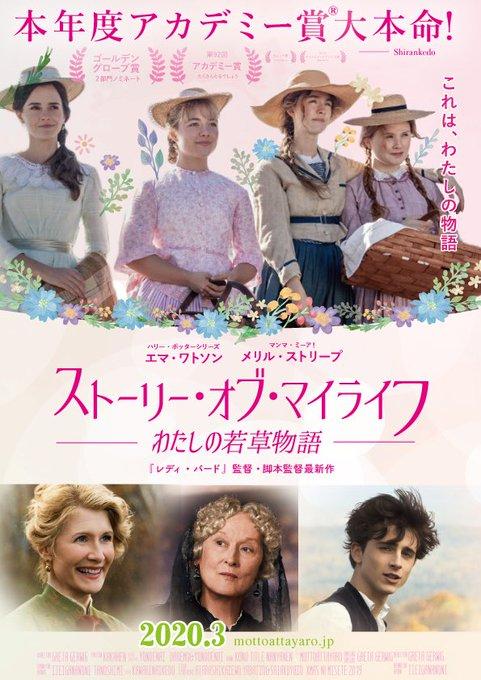 Image result for ストーリー・オブ・マイライフ 映画
