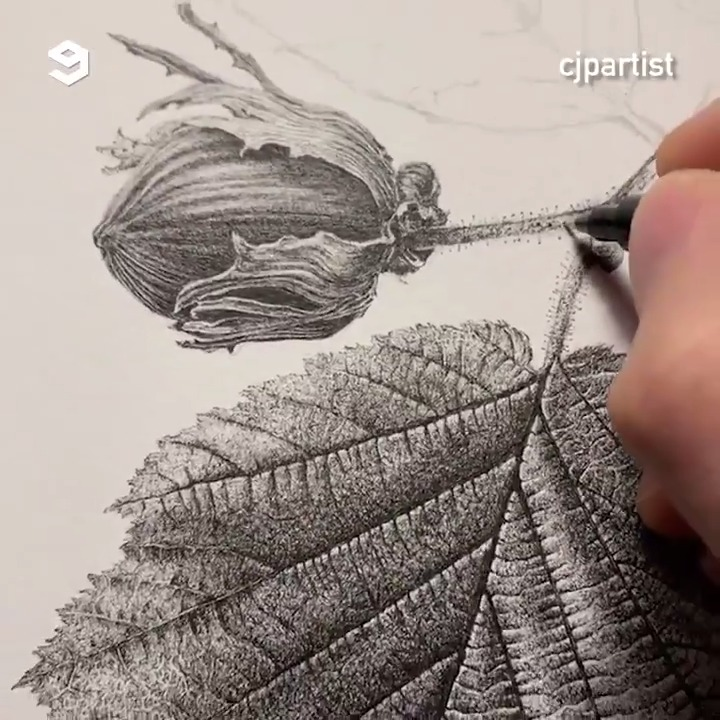 These realistic drawings are so detailed! By @cjpartist