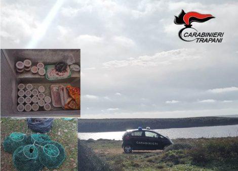 Raccolgono ricci di mare in area protetta a Favignana, denunciati tre palermitani - https://t.co/heF477dAn8 #blogsicilianotizie