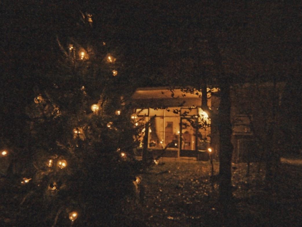 Prettige Kerstdagen!   #vakantiebungalow #vakantiewoning #natuurhuisje #vakantiehuisje #tinyhouse #boshuis #boshuisje #lodge #cabininthewoods #cabinlove #cabin #cottage #cottagelifepic.twitter.com/fUNkB6VcU9