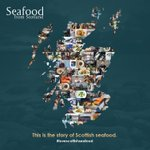 Image for the Tweet beginning: Scotland boasts 790 islands! With