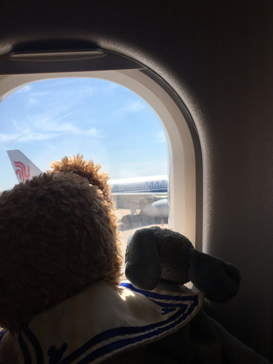 They're wondering to where our next trip is just like we are! @JetBlue @emirates @air_italy_  #duffythedisneybear where will he go next?