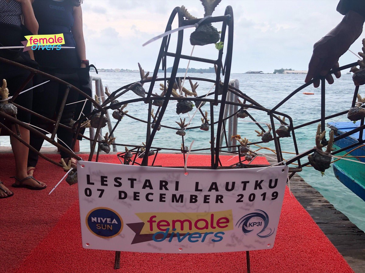 """Lestari Lautku"" Female Divers Event - 07 December 2019, Pulau Pramuka-Kepulauan Seribu.  #femaledivers #lestarilautku #indonesia #scubadiving #coraldefender #protectouroceans #divers #oceanambassador #divingindonesia #divetravel #scubaaddict #scubaworld #diving #KP3I #communitypic.twitter.com/qni9NmrIIv"