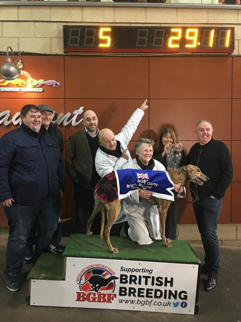 🇬🇧🏆 KING SHEERAN - 2019 BGBF BRITISH BRED DERBY CHAMPION 🏆🇬🇧  Congratulations to the KSS Syndicate and Liz & Rab McNair, the team behind your 2019 BGBF British Derby Champion - King Sheeran!  Video ➡️   @studbookuk @RabboomMcnair @OwlertonRacing