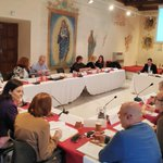 Image for the Tweet beginning: Productiva reunión de la Comisión