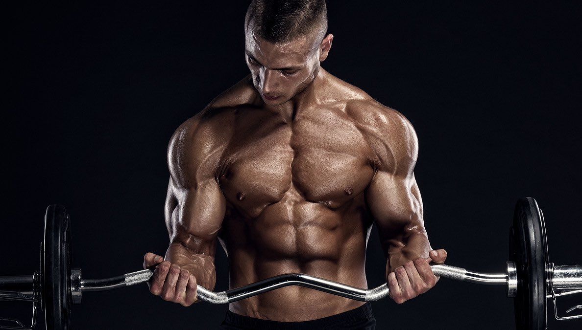 Stay focused & motivated my friends! #fitness #bodybuilding #muscle #armday #biceps #triceps #training #gymlife #nopainnogain #workingout #nodadbod #writerslife<br>http://pic.twitter.com/bCskjsbtsp