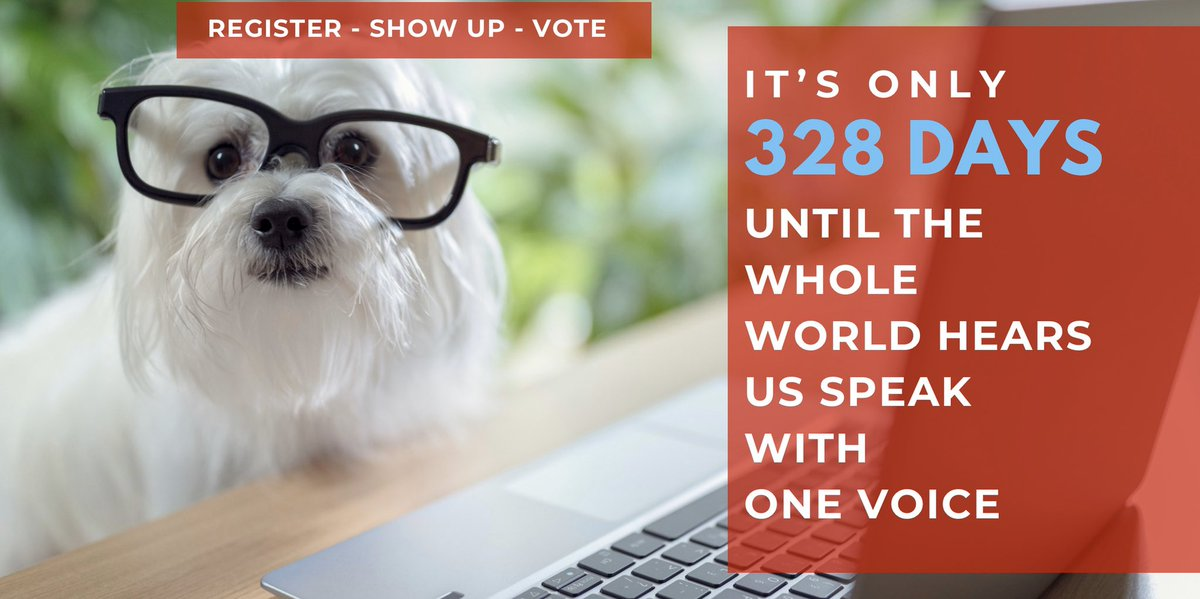 It's time to round up EVERYONE you know to help #GOTV2020The election is in just 328 days.Start now - make sure everyone you know is registered and prepared to vote.Gather your friends & support Dem candidates every way you can.#OneVoice1#wtp2020#FairFight2020
