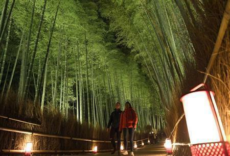 Tumblr(Photo)Updates | 初冬の嵐山を彩る花灯路で試験点灯(産経新聞)  https://ift.tt/35fyG7epic.twitter.com/Ff1QeQEB9e