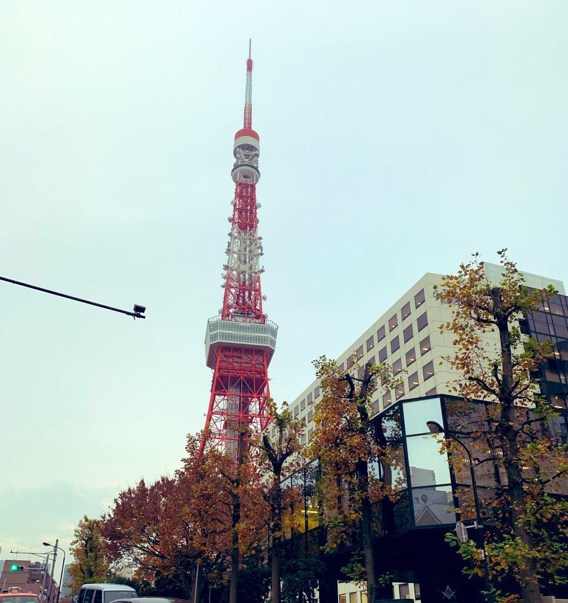 夕方は久しぶりの #東京タワー をお散歩♪ そして近くでやっていた #東京クリスマスマーケット2019  も見て来ました^ ^ このカップを買わないとドリンクが飲めないのはちょっとキツかった笑 けど、楽しめました〜^ ^
