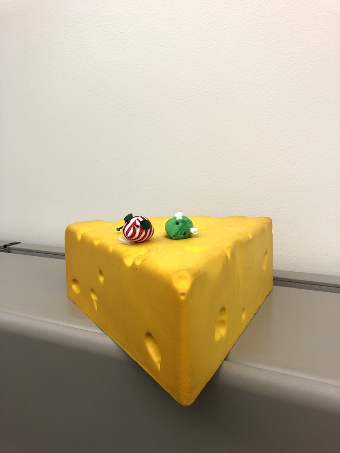 "@aj_weisman and I are having too much fun on our 10 minute walk/@wiscmedphys scavenger hunt every day. Yesterday's clue was ""On the night before Christmas, not even this was stirring."" The answer shouldn't be confused with the second cheesehead we found in the department."