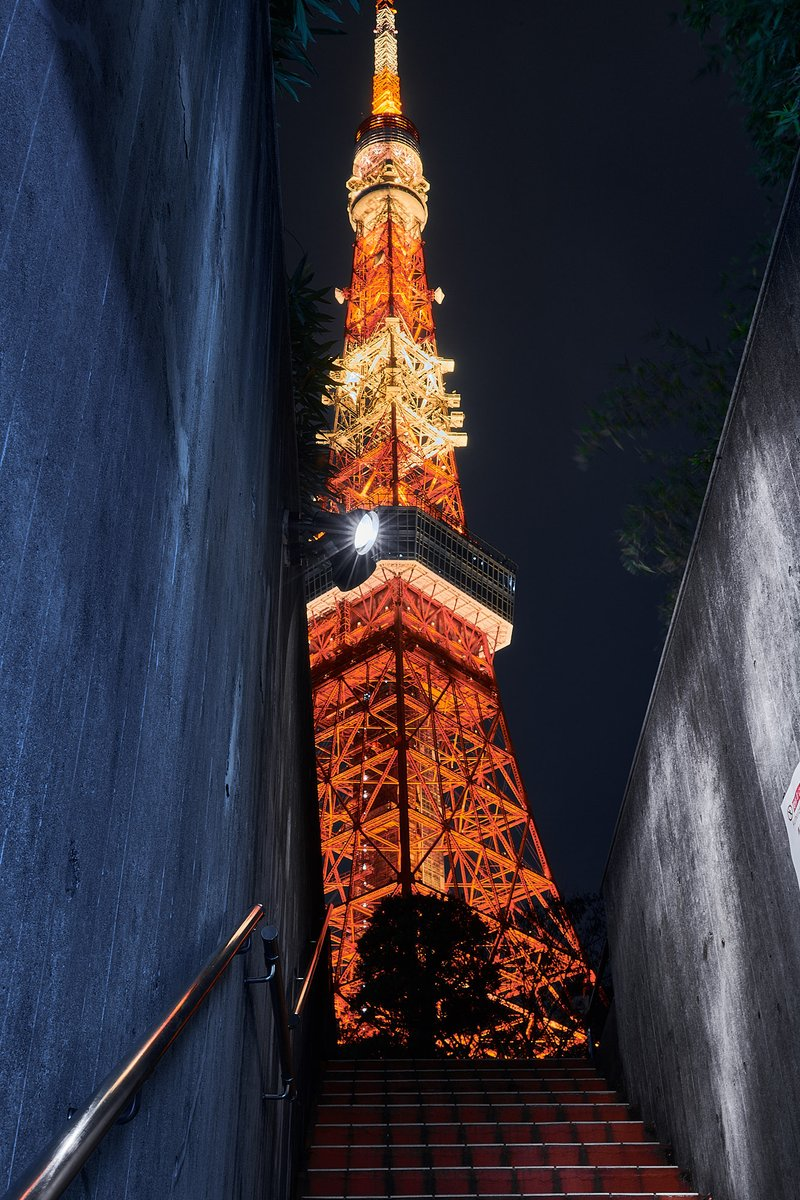 東京も綺麗だね