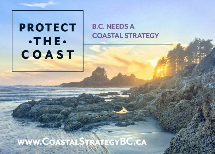 A B.C. Coastal Strategy and Law will provide protection for sensitive marine ecosystems, and vulnerable species, while also protecting coastal communities and economies. #CoastalStrategyBC