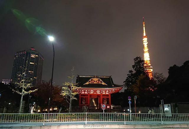 #東京タワー と旧台徳院霊廟惣門 #夜景 #日本 #Japan #japan #東京 #Tokyo #tokyo