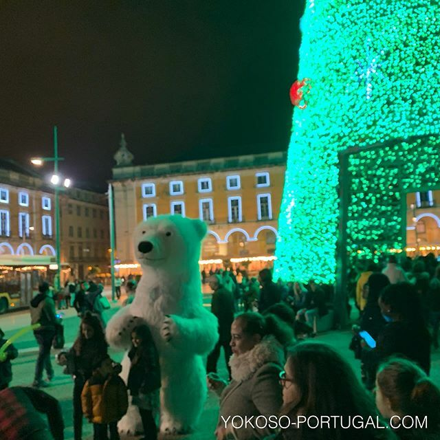 test ツイッターメディア - クリスマスツリーとシロクマ。 #リスボン #ポルトガル #クリスマス https://t.co/tXrstLtxJR