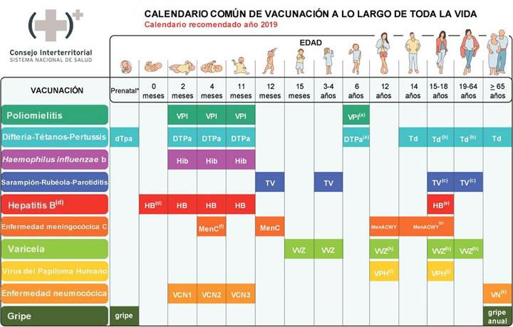 Esquemas Apuntes de Salud - Actualización Esquema Calendario Común de Vacunación a lo largo de toda la vida... ELlVIebW4AIJhas?format=jpg&name=900x900