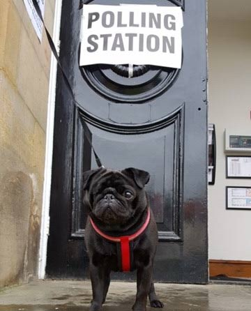 Don't miss your opportunity to have your say in today's #GeneralElection. Polling stations are open until 10pm. #dogsatpollingstations #BeAVoter #NorthYorkshire