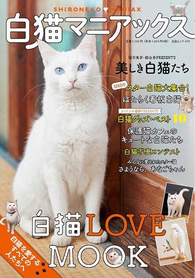 【㊗️雑誌デビュー】なんと我が家の猫「白桃」を12/20発売の「白猫マニアックス」という本で1ページ丸ごと使って紹介してもらえる事になりました…!嬉しすぎるので3冊買います🐾amazon➡︎