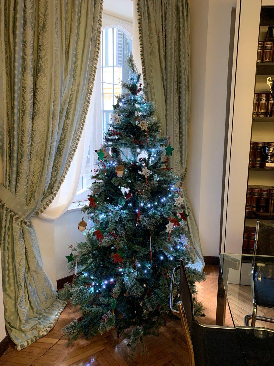 test Twitter Media - Christmas tree  arbre de Noël  árbol de Navidad  Weihnachtsbaum  #FollowtheAcorn https://t.co/QpFwf9uEh9