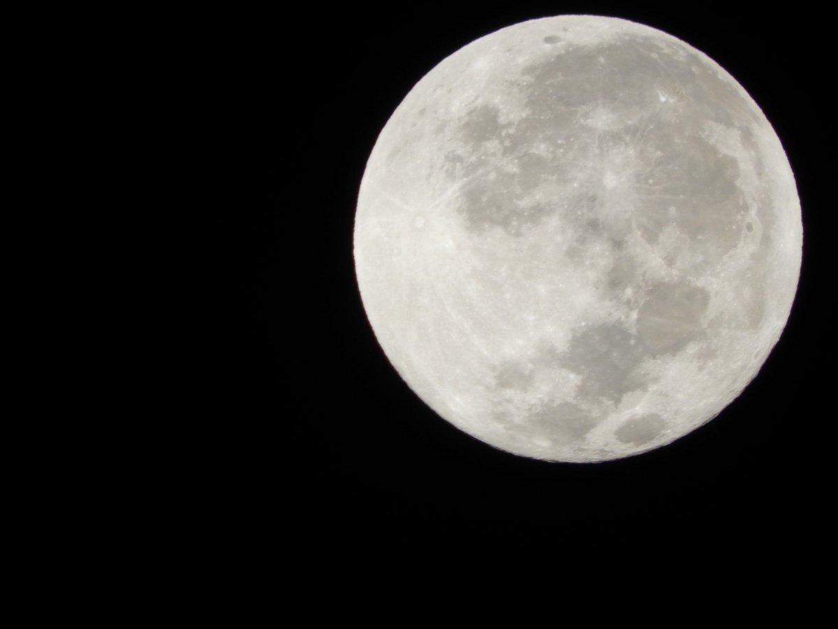 今年最後の満月!コールドムーン!思わず外に出てカメラを構えた。冷たい空気が気持ちよかったー。・・・おやすみ