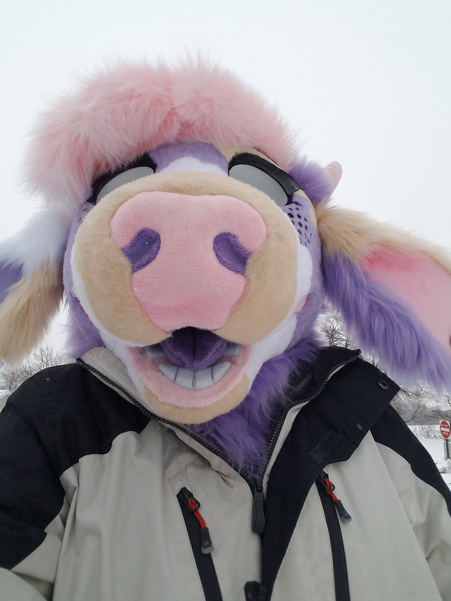 BABY MOO TIME M MO MOO MOOOOOVE OUTTA THE SPOTLIGHT ITS MINE #furryfandom #furry #fursuiter #moo #cow #pastel #imbaby #winter #snow