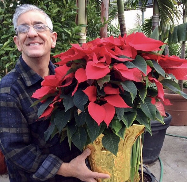 Showing off beautiful #poinsettias grown by the Farmers at Smile Farms on #NationalPoinsettiaDay today!    @SmileFarmsInc creates jobs for adults with developmental disabilities. Our Gifts That Give Back Collection donates 20% of proceeds to #SmileFarms: