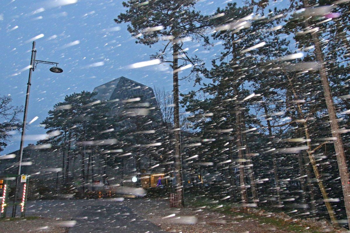 Arriva la prima neve sul Carso triestino, strade imbiancate a Opicina e Monte Grisa. #Trieste LE FOTO e L'ARTICOLO