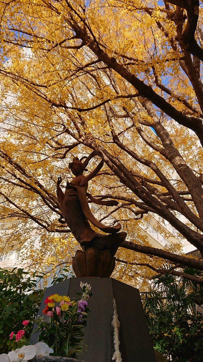 吉良邸の前に回向院へ実に10万人以上が犠牲になったと言われている江戸史上最悪の惨事、振袖火事💦多くの身元不明の遺体等を葬り供養する為に四代将軍家綱公が建てられた念仏堂が起源です🙏こちらはあの義賊で名高い鼠小僧のお墓があり、皆が削ってしまうので削り専用のお前立ちがありますよ💰☺️