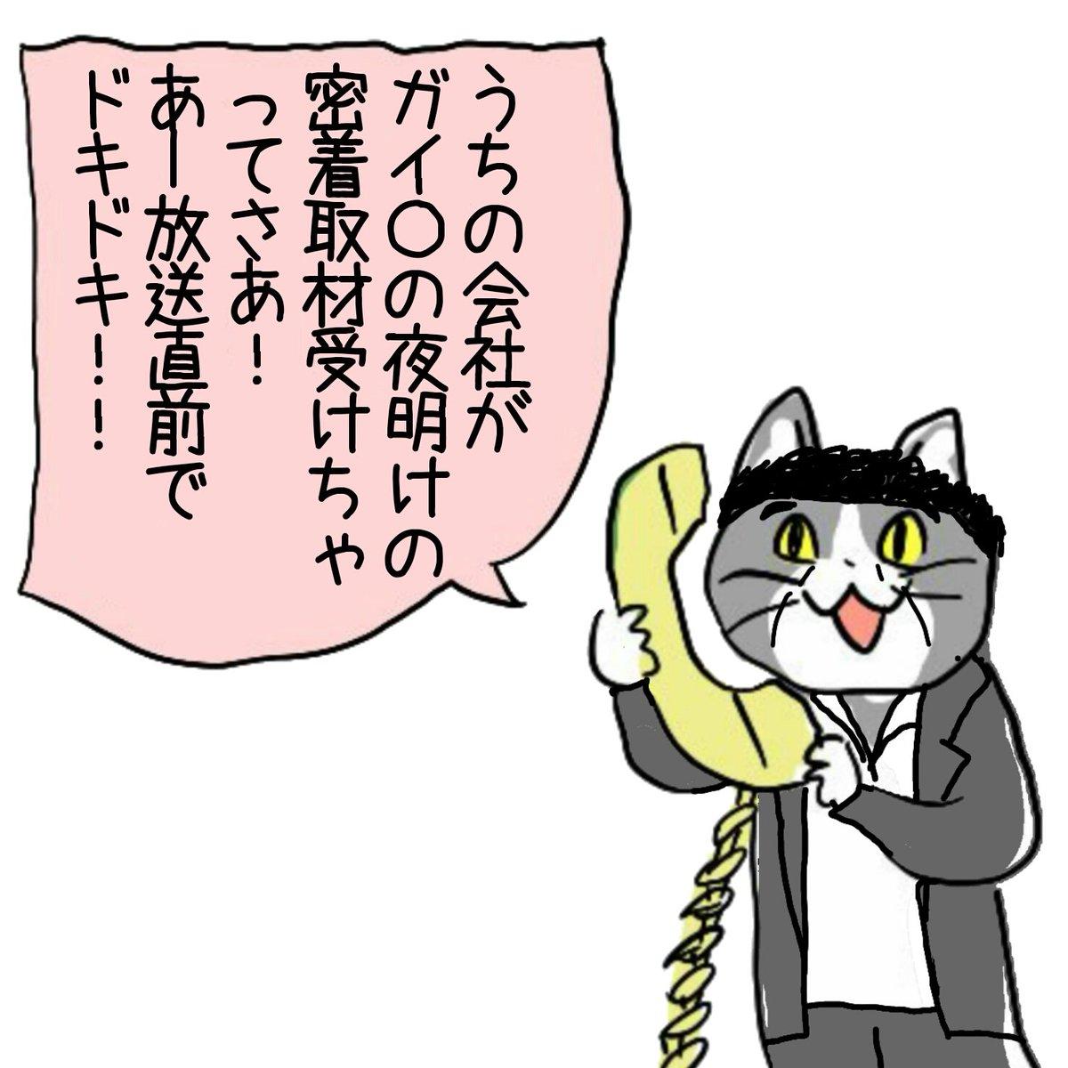 例のアレ #現場猫 #電話猫