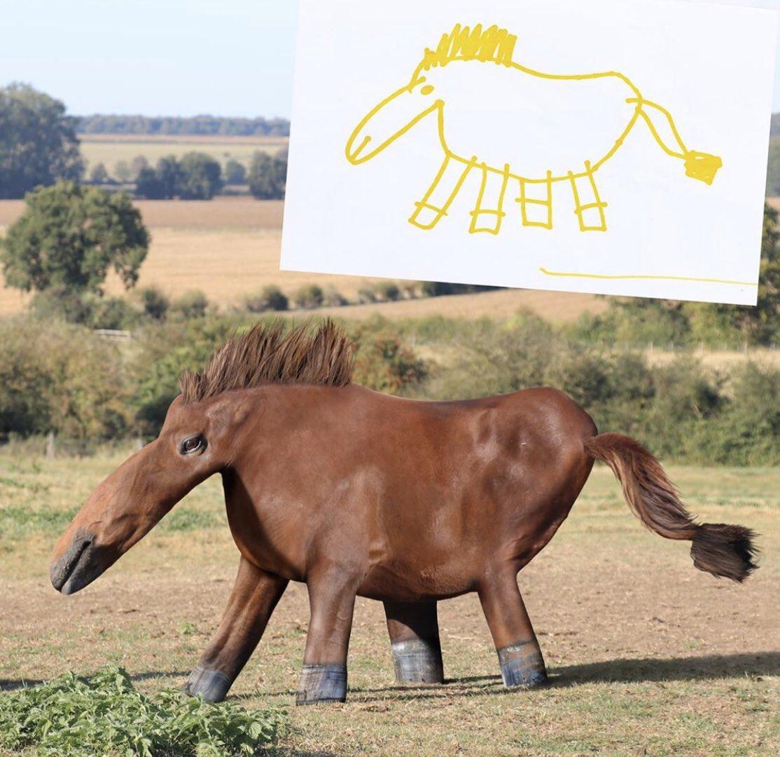 もしも子供が描いた絵をお父さんがリアルな動物に再現したらシリーズ。意表を突かれる動物ばかりで面白い。