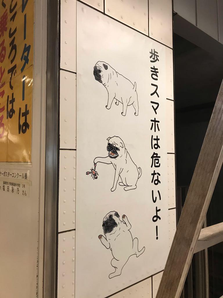 歩きスマホNGの広告にお犬とザリガニという脈絡のなさがあまりにもSUKI