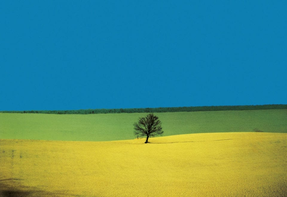 #imageoftheday Franco Fontana's 'Puglia', 1987, breaks the landscape down into bold and colourful elements. Blue skies meet vast swathes of yellow and green fields. <br>http://pic.twitter.com/O0uLrdBA7v