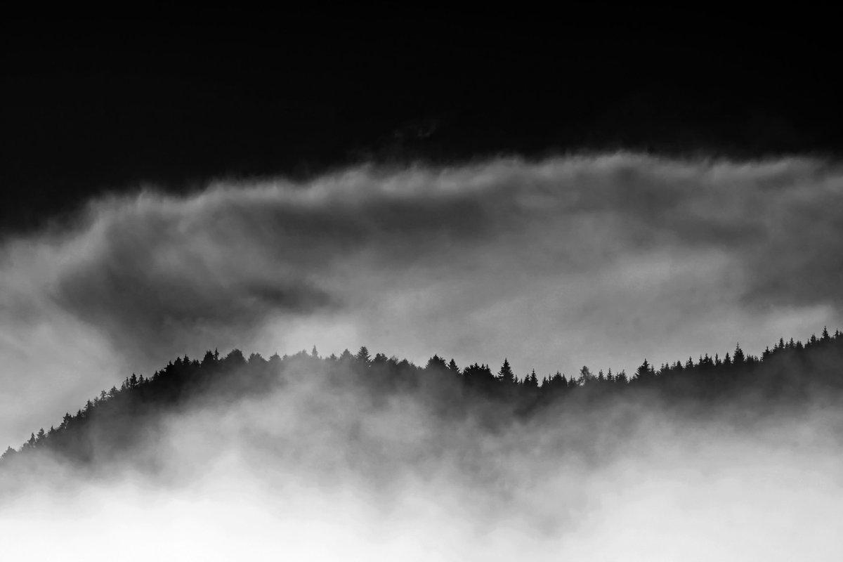 """meine fotos der letzten fünf jahre mal kurz durchzählen, und dabei """"verlorene"""" fotos finden   2018 """"der schwarzwald ist schon sehr nebulös""""  #schwarzwald #blackforest #freiburg #freiburgimbreisgau  #nebel #neblig #fog #foggy #landschaftsfotografie  #landscapephotographypic.twitter.com/3LdRCg6vZs"""