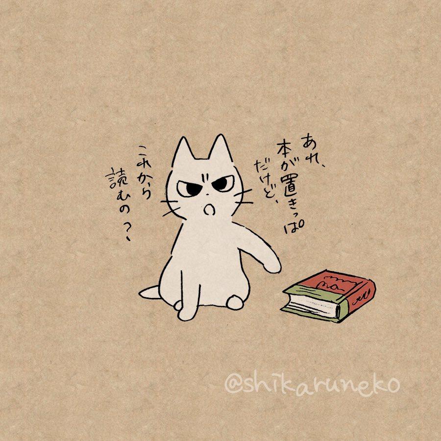 読んだ本を本棚にしまわない人を叱ってくれる猫