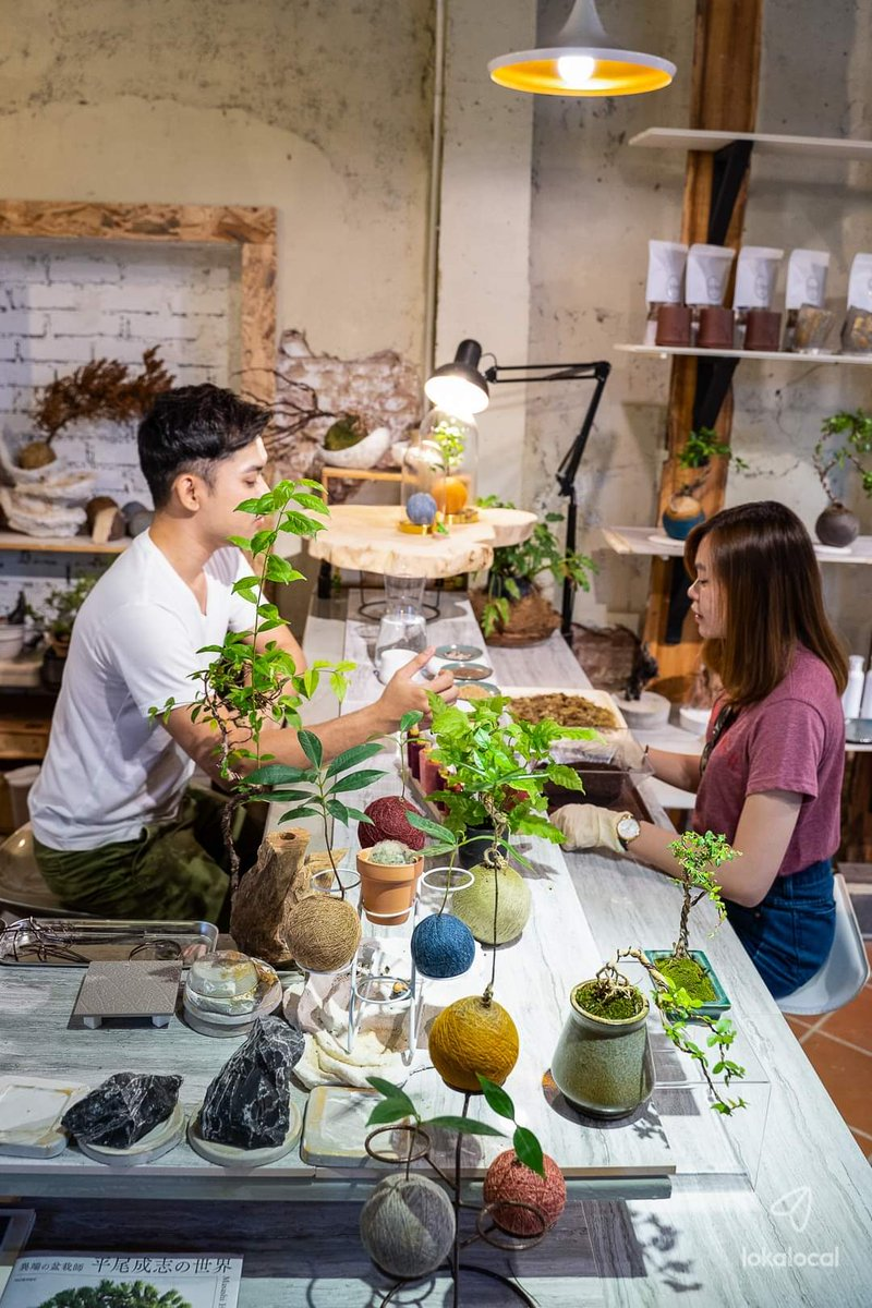 Kokedama is a contemporary style of bonsai our local expert back from Japan and his workshop is the first of its kind in Penang!   His workshop shares the  Techniques of shaping a Kokedama  Artistic value  Caring tips  High tea set    https:// loka.fun/kokedama-works hop  …  <br>http://pic.twitter.com/N6xPmwdK3E