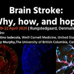Image for the Tweet beginning: #BrainConference - Costantino Iadecola (@WeillCornell)