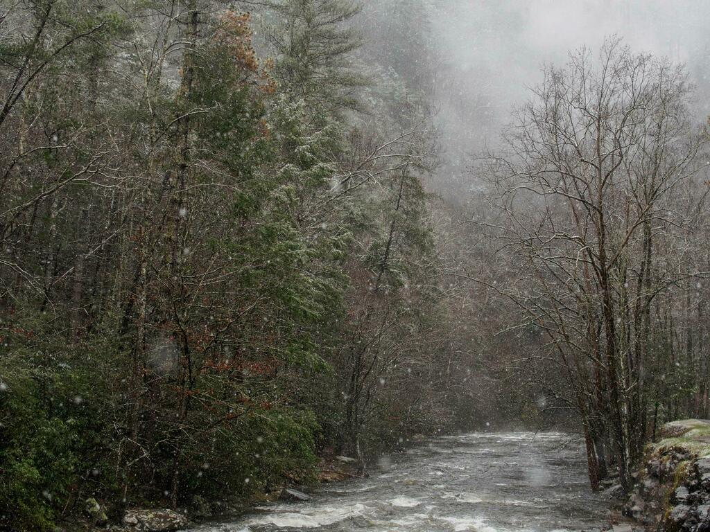 Snowfall in The Great Smoky Mountains National Park [oc] [2200x1650] #nature