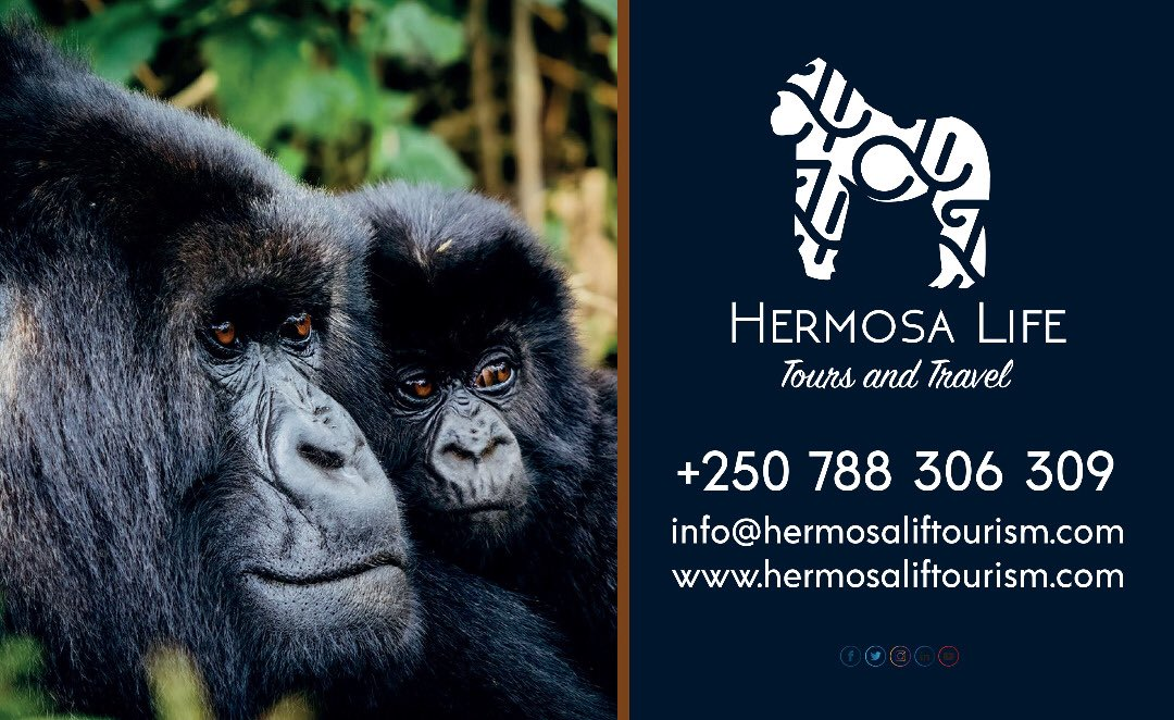 Too much scheduling could be ruining your weekend, Plan your weekend getaway with Hermosa Life Tours and Travel to your dream destination for an event that will make you feel like!🤗💃🏾🧚🏾‍♂️ #VisitRwanda #Rwandalicious #Rwandanziza https://t.co/mvGlsBm9O9