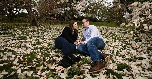 Guess who's turn is it tomorrow? :D . . . . . #engagementphotos #engagementsession #engaged #isaidyes #engagement #kiss #morrisarboretum#sunset #engagementphotography #gettingmarried #engagementphotographer #springengagement #engagementshoot #shesaidyes … https://ift.tt/2EhaIwJpic.twitter.com/yRpYKasocu
