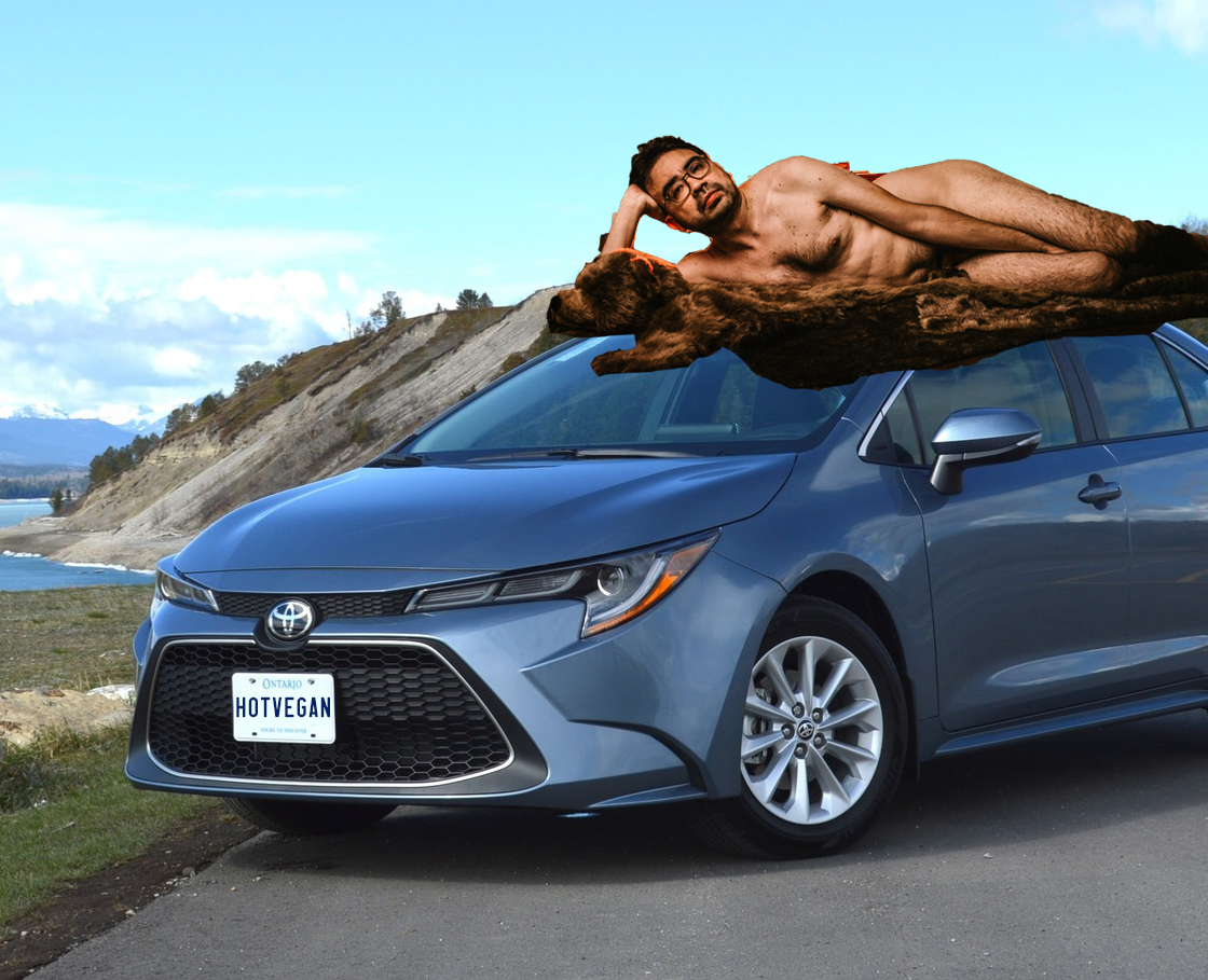 You've heard of Elf on the Shelf, now get ready for
