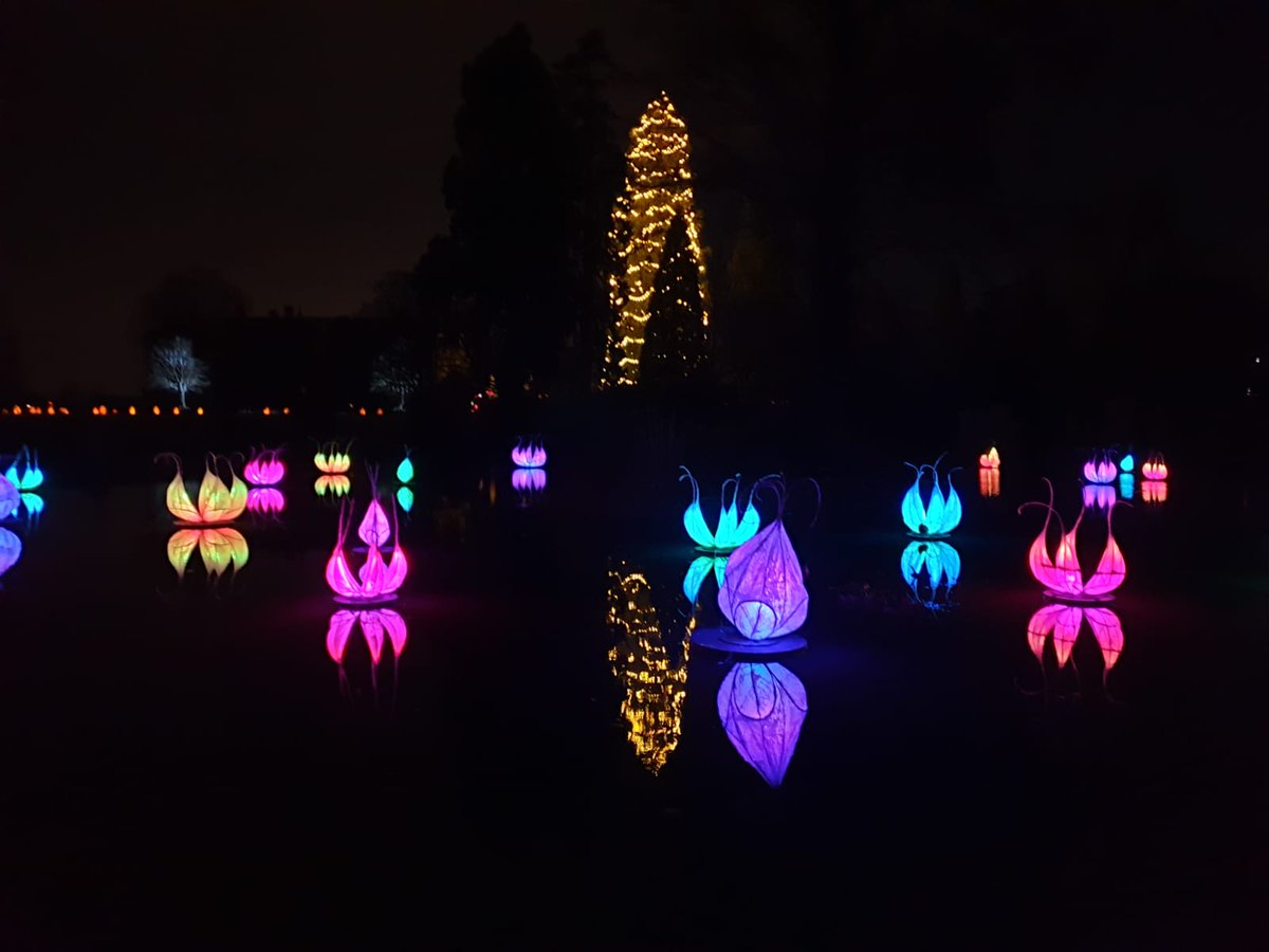 Glow Wild, Wakehurst. What an amazing evening with the family. Highly recommend. #workorplay #christmas #family #lights