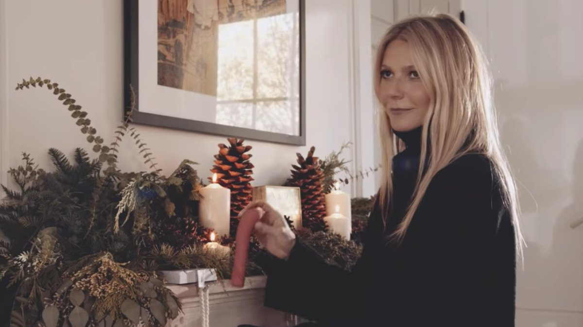 32 questions raised by this Goop holiday ad, starting with the vibrator